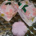 桜の焼きチョコ