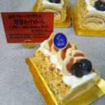 DSC_0031.JPG